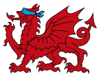 Welsh Dragon Anti-Slavery Partnership Logo